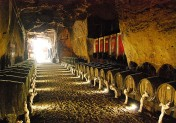 cave_monplaisir_chinon_exposition