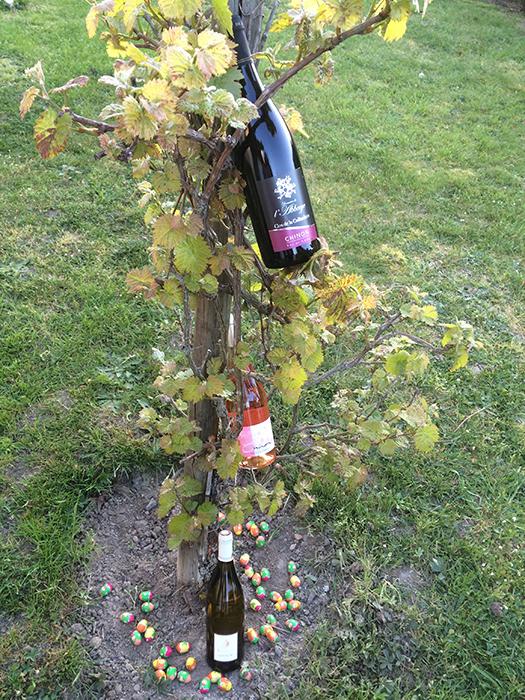 bouteilles de vins cachées avec des oeufs de paques