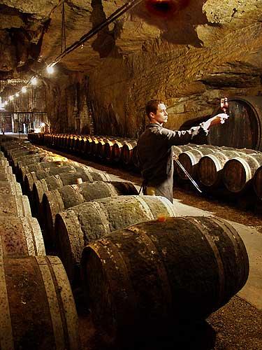 sommelier teste le vin de chinon dans la cavemonplaisir